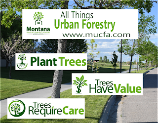Montana Urban and Community Forestry